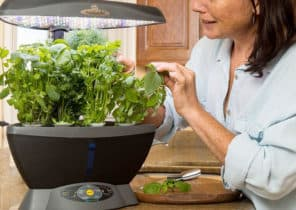 Indoor Hydroponic Herb Garden Systems & Kits