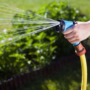 Pocket Hose Expandable Garden Hose Review