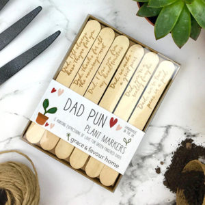 Dad Pun Plant Markers for Father's Day