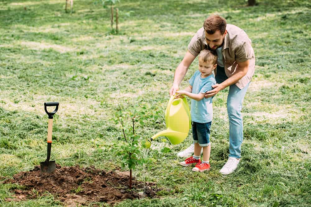 10 Father\'s Day Gardening Gifts for Dad - Better Gardener\'s Guide
