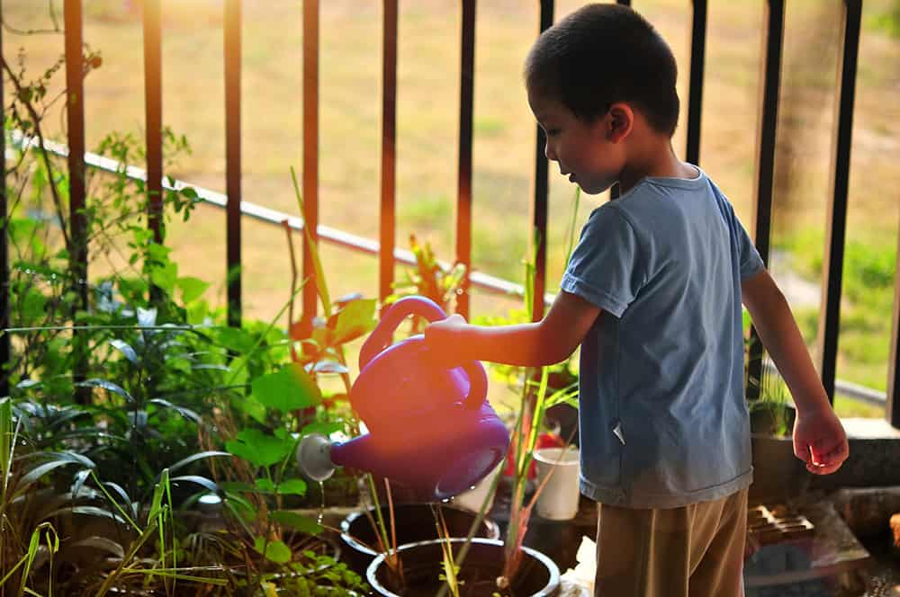 Watering a Container Garden