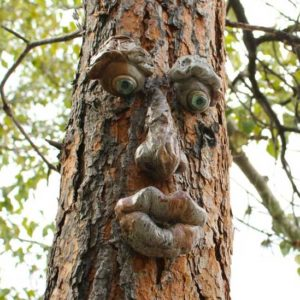 Tree Face Sculptures Gift for Gardeners