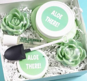 Aloe There Spa Gift Box