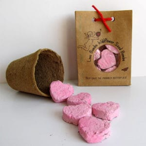 Love Bombs Wildflower Seed Valentine's Day Gifts for Writers
