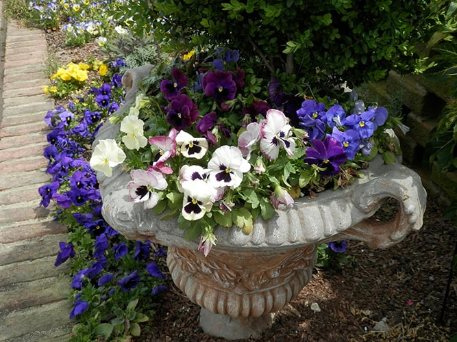 Heavy Flower Planter to Deter Thieves