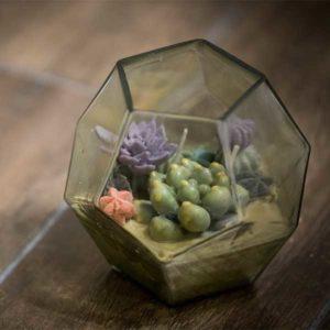 Succulent Terrarium Candle