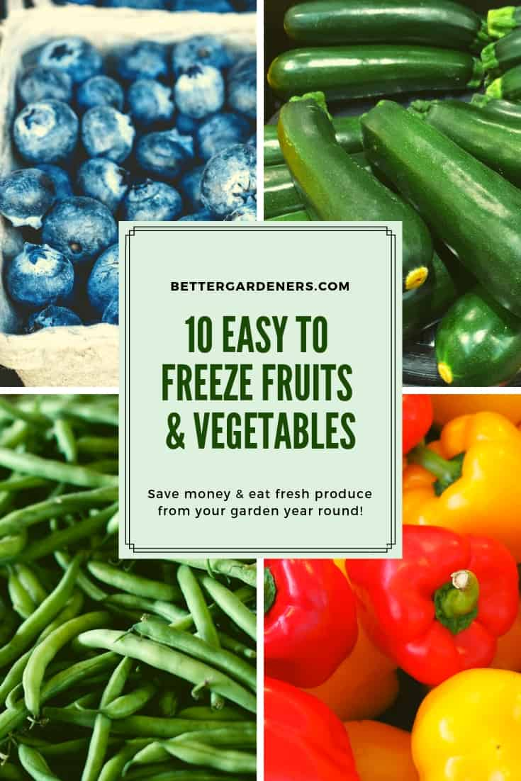 10 Easy to Freeze Fruits & Vegetables from Your Garden