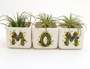 MOM Planter Set