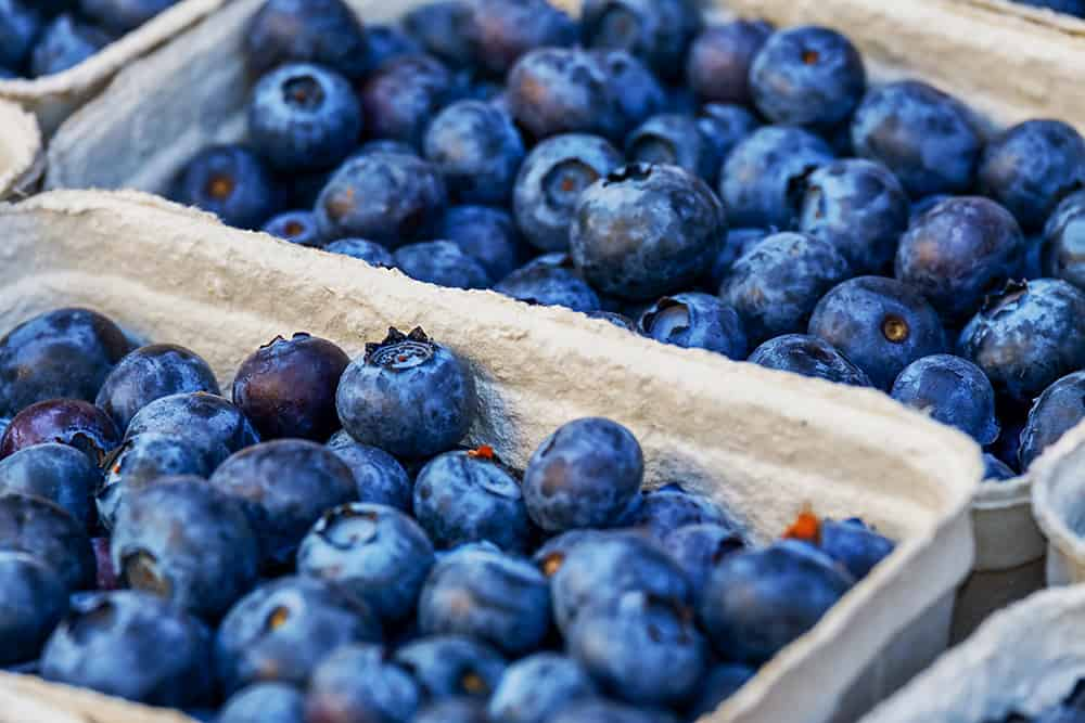 Easy to Freeze Fruits - Blueberries