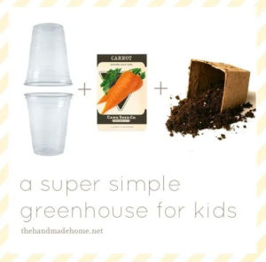 DIY Greenhouse Activity for Kids