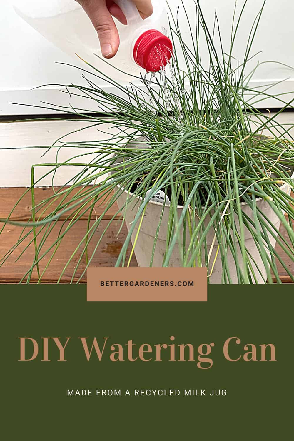 How to Make a DIY Watering Can from a Recycled Milk Jug